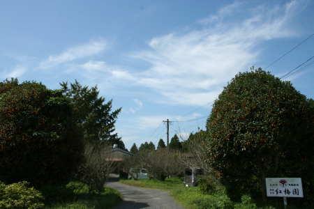 20081009-2.jpg