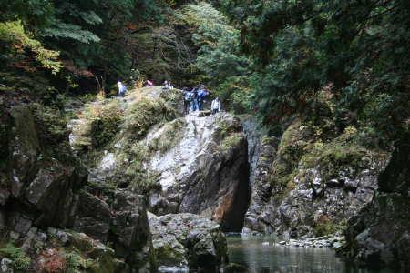 20081105-3.jpg